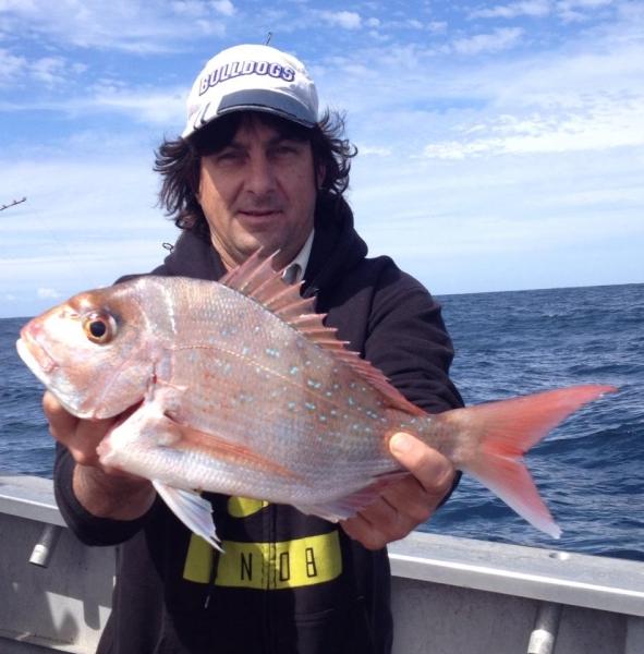 Pearl Perch fish fishing charter boat.jpg