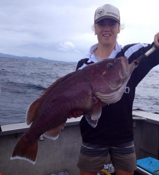 great catch fish The Rocks Fishing Charters SEA SCOUT II SOUTH WEST ROCKS.jpg