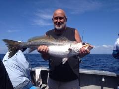 Trial bay fish fishing charter boat.jpg