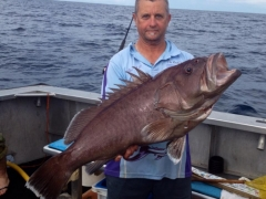 amazing fish The Rocks Fishing Charters SEA SCOUT II SOUTH WEST ROCKS.jpg
