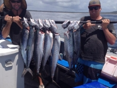 spotted and Spanish Mackrel fish on fishing charter.jpg
